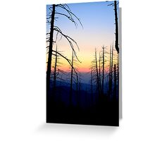 Snaggle Tooth Forest Greeting Card