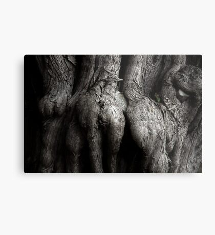 Romantically Entwined Metal Print