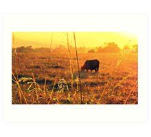 Croome Cow Sunset Art Print