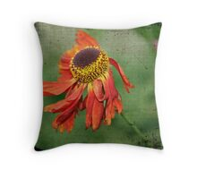 Firework Throw Pillow