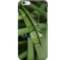 It rained today, Free State, South Africa  iPhone Case/Skin