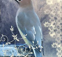 Cedar Waxwing, Poised and Pretty by Bonnie T.  Barry