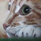 Mini Cat 1 by Valerie Simms