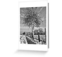 Hawthorn and fence in Winter Greeting Card