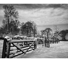 Farm gate and trees in Winter Photographic Print