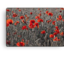 Mono Crop & Poppy Canvas Print