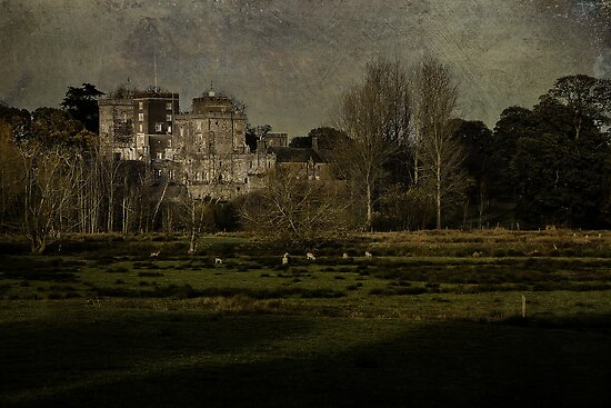 Powderham Castle by Country  Pursuits