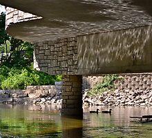 Reflection Under the Bridge by Ginadg73