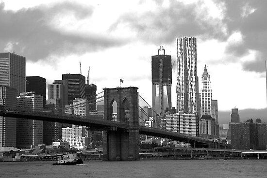 Brooklyn Bridge Park by Catherine White Photography