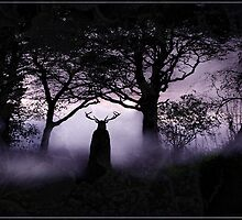 Shadow of Herne by Angie Latham