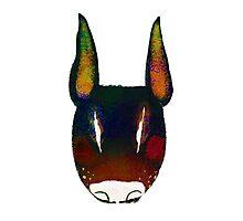 Boo Terrier (black) Photographic Print