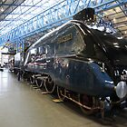 The Mallard at York Railway Museum 2010 by Jan Fialkowski