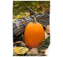 Autumn Pumpkin Poster