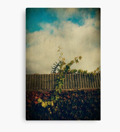Obstacles Canvas Print