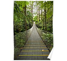 Tropical Forest Suspension Bridge Poster