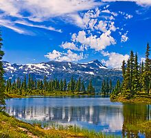 HAIRTRIGGER LAKE by Sandy Stewart