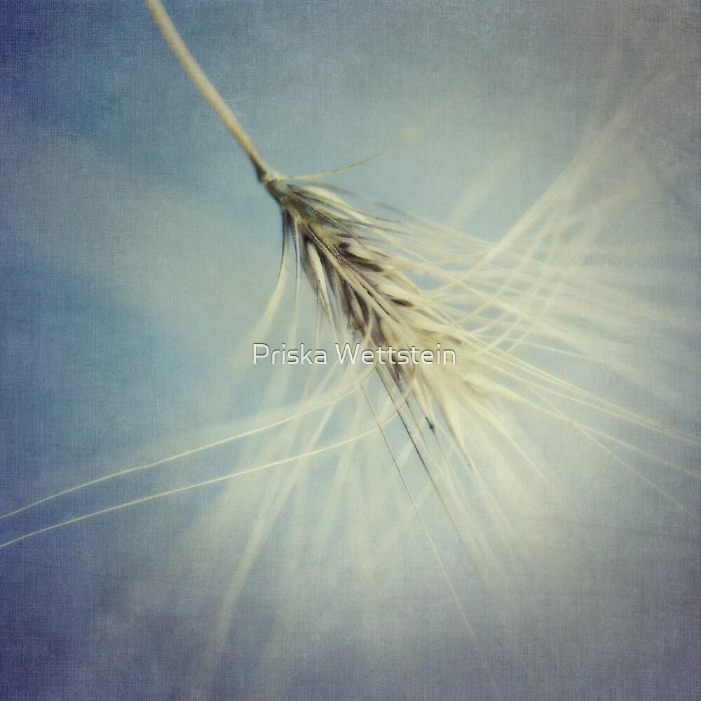 twirling by Priska Wettstein