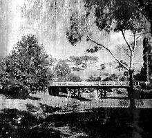 Belubula River by garts