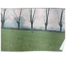 LE LEPRI.......ITALY-- 1000 VISUALIZZAZ. GIUGNO 2013  -- RB   EXPLORE 12 DICEMBRE 2011 -- Poster