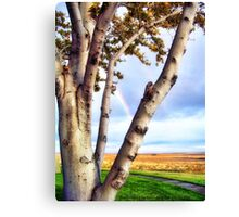 Touch of Eden Canvas Print