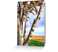 Touch of Eden Greeting Card