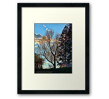 Sun's Last Kiss Framed Print