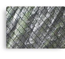 Waterfall Behind a Fence Canvas Print