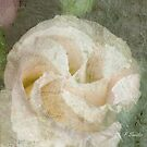 Lisanthus Swirl by Patsy Smiles