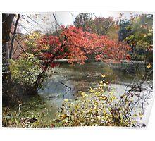 Autumn on Greenbelt Lake 3 Poster