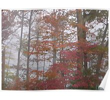 Autumn on Greenbelt Lake 5 Poster