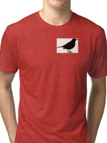 Scare Crow Tri-blend T-Shirt