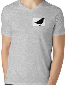 Scare Crow Mens V-Neck T-Shirt