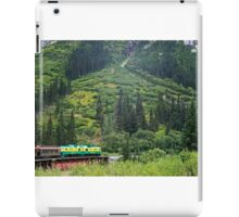 Train in the valley-Alaska iPad Case/Skin