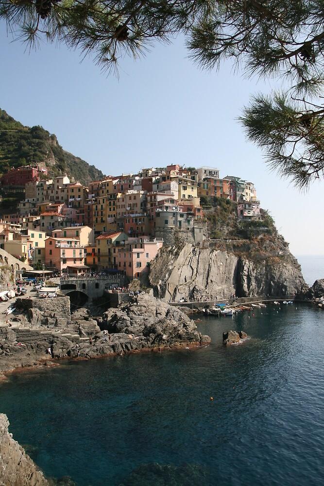 Riomaggiore - Cinque Terre 2 by Rob Chiarolli