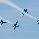 Blue Angels Diamond Roll by Henry Plumley
