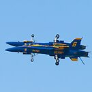 Blue Angels Fortus by Henry Plumley