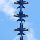 Blue Angels Tucked Under by Henry Plumley