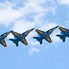 Blue Angels Tucked Under with Hook by Henry Plumley