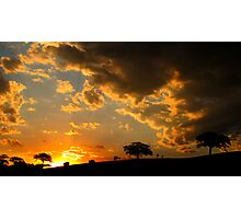 Triple fig Sunset Photographic Print
