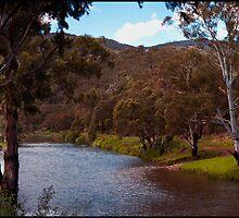 Wonnangatta River. by Rick Hoult