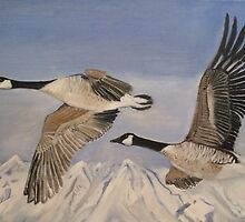 Flying geese by davidhtarrant