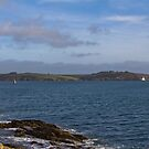 Falmouth Harbour  by Brian Roscorla