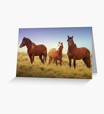 High Country Three Greeting Card