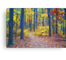 Deep in the Heart of Color Canvas Print
