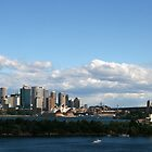 Panorama of Sydney Harbour by Rob Chiarolli