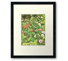 A beautiful happy flower dance Framed Print