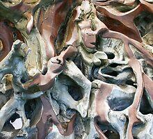 Tangled Roots by Rob Chiarolli