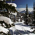Happy Holidays! - Mt. Rainier N. P. by Mark Heller