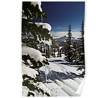 Happy Holidays! - Mt. Rainier N. P. Poster