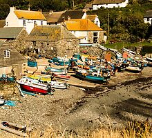 Cadgwith Cove by Brian Roscorla